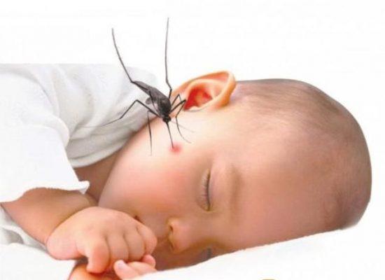 Trẻ nhỏ là đối tượng chính hay mắc sốt xuất huyết
