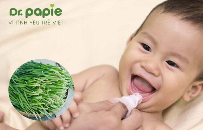 Chữa trắng lưỡi do nấm cho trẻ sơ sinh bằng lá hẹ