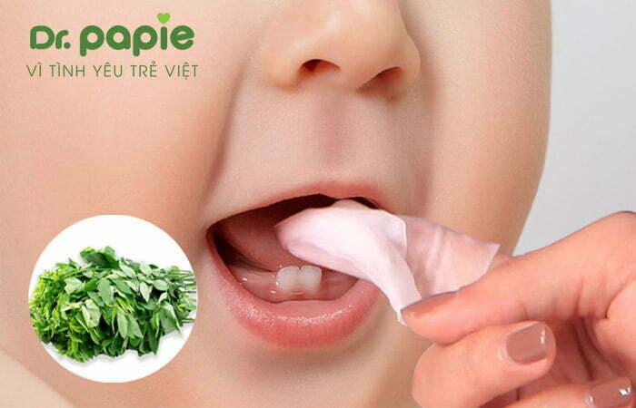 Rơ lưỡi cho trẻ bị trắng lưỡi bằng lá rau ngót