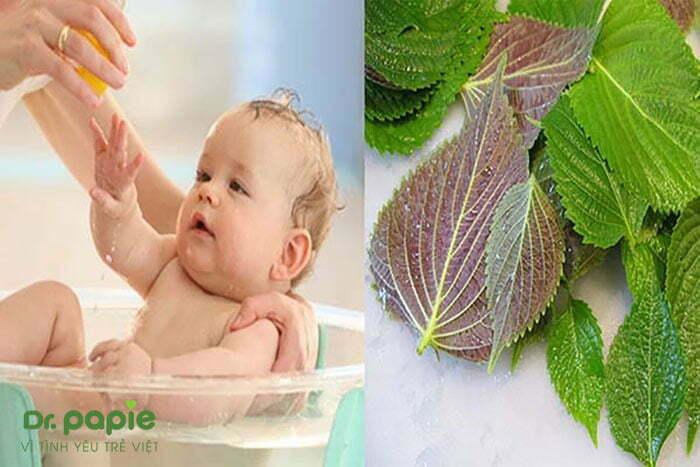 Tắm là tía tô cho trẻ bị sốt phát ban